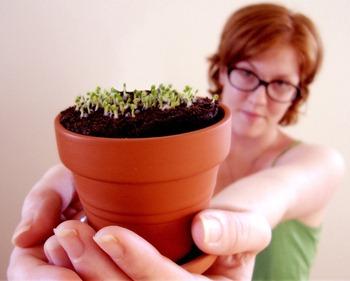 Тонкости сбора семян