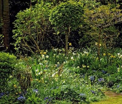 Весна в природном саду