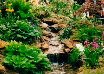 Озеленение водоема